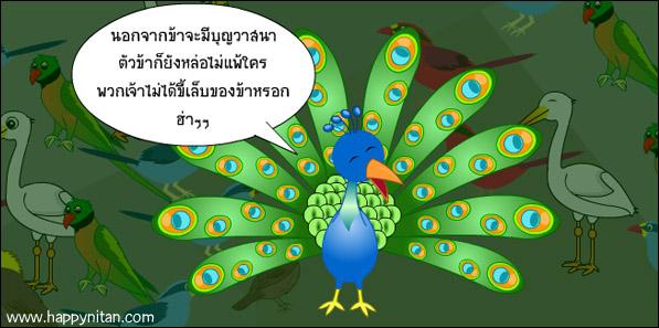 นิทานชาดก นกยูง