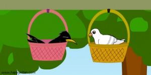 นิทานชาดก กโปตกชาดก นกพิราบกับกาขี้ขโมย